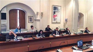 Reparto agrumicolo al collasso: «Amministrazione comunale incapace di dare soluzioni»