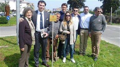 Corigliano, il Rotaract dona sei alberi alla città