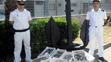 Corigliano: Guardia Costiera, sequestrato oltre un quintale di pesce