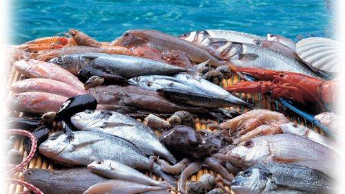Pesca abusiva pugliese nella