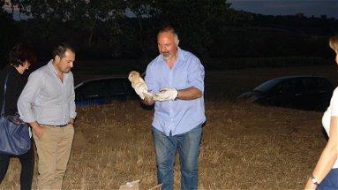 Ambiente: liberati in natura uccelli rapaci curati al CRAS, con l'aiuto della Polizia Provinciale