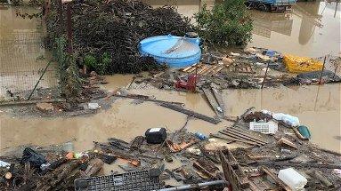 Crati esondato, famiglie evacuate. Ma i danni sono enormi | VIDEO
