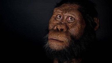 É il calabrese Antonino Vazzana, il ricercatore che ha contribuito alla ricostruzione in 3D del volto dell'antenato di Lucy