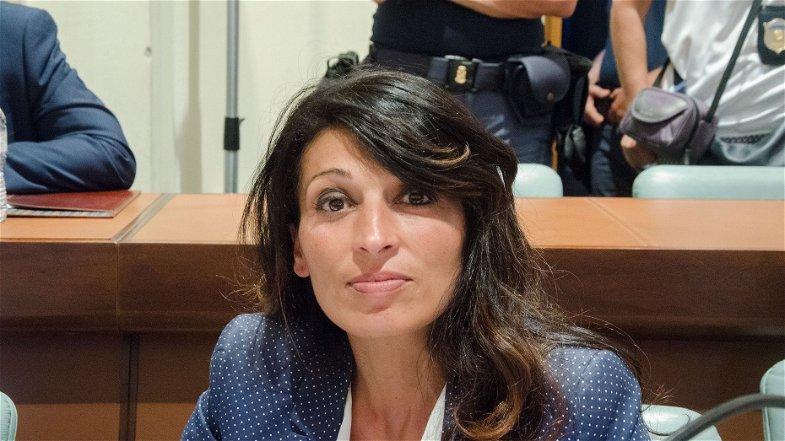 Il consigliere Zangaro si appella ai cittadini di Corigliano Rossano: più empatia per i cani randagi