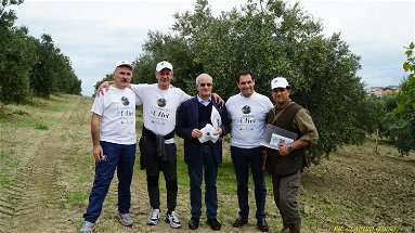 Patto rete produttori, deco e marchio olio 2 papi Agricoltura, gruppo permanente ribadisce obiettivi