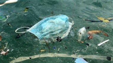 Legambiente denuncia: guanti e mascherine abbandonati nell'ambiente. C'è rischio contaminazione | VIDEO