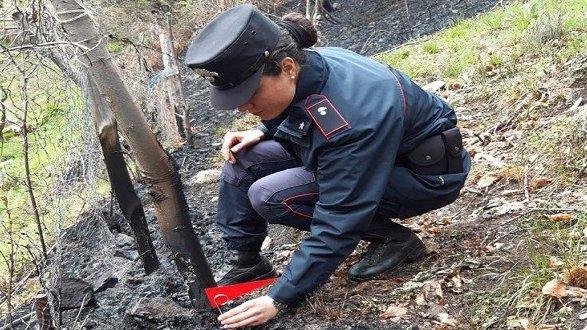 Incendio a Longobucco: denunciato dopo aver dato fuoco a residui vegetali