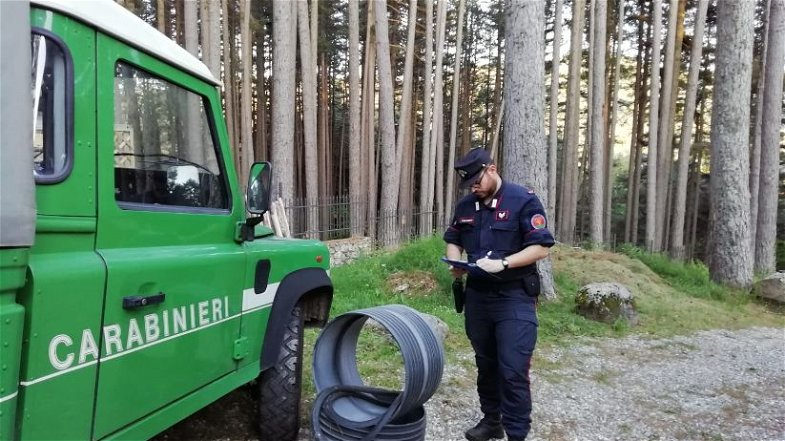 Proseguono senza sosta le attività di controllo dei Carabinieri Forestali nel Parco della Sila