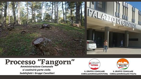 """Operazione """"Fangorn"""" il Comune di Corigliano Rossano si costituisce Parte Civile"""