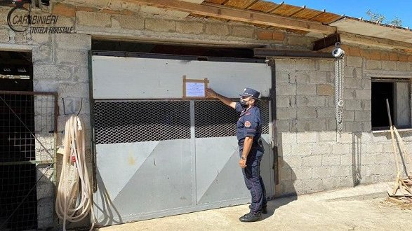 I Carabinieri pongono sotto sequestro due fabbricati abusivi