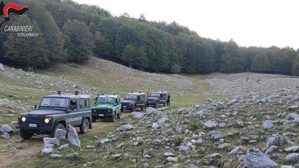 Accendono fuochi dentro un'area protetta: turisti sanzionati