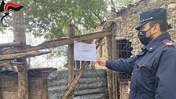 Rota Greca, denunciato un allevatore per abbandono di rifiuti