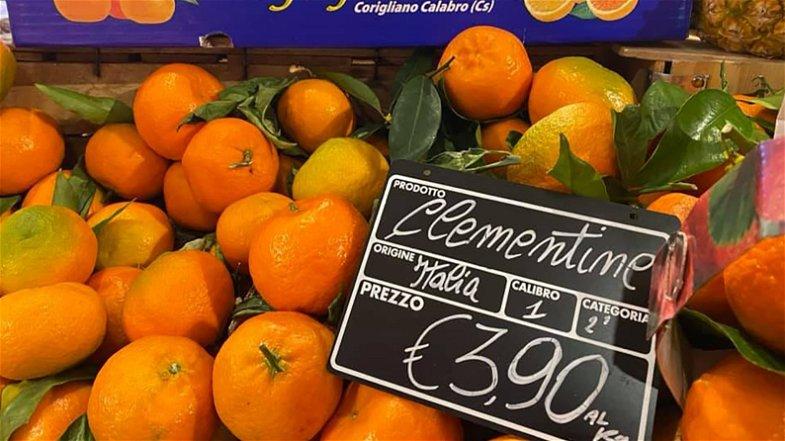Clementine acquistate a prezzi da fame e rivendute come se fossero d'oro. Ecco il guadagno della grande distribuzione al Nord