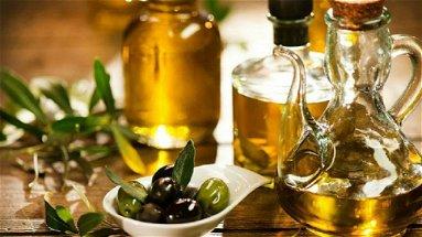 Il movimento turismo dell'olio muove i primi passi in Calabria