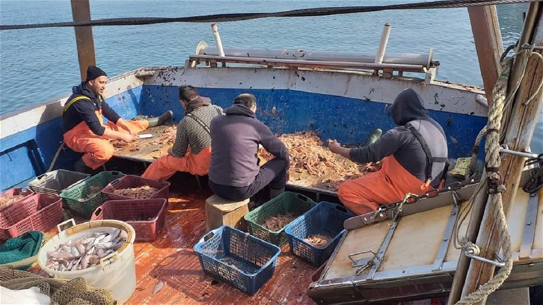 I Curatolo, l'orgoglio di essere pescatori da cinque generazioni