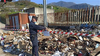 Verbicaro e San Nicola Arcella, denunce e sequestri in seguito ai controlli dei Carabinieri Forestali