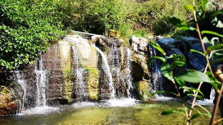 Primo maggio all'insegna della natura: organizzata una passeggiata ecologica nel parco del Coriglianeto