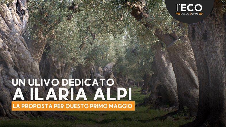Dedicare ulivi a Ilaria Alpi, Miran Hrovatin, Giulio Regeni e a ogni caduto sul lavoro e per la pace
