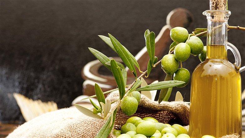 Ottima stagione per l'uliveto Calabria, ma Coldiretti denuncia l'aumento di importazione di olio straniero