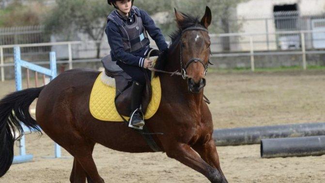 Il piccolo Nicolò Milienidi Crosia continua la sua'corsa'a cavallo