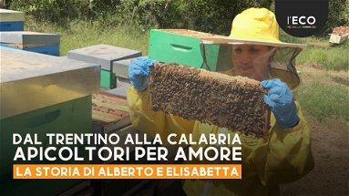 Alberto ed Elisabetta dal Trentino sono scesi in Calabria per amore delle api