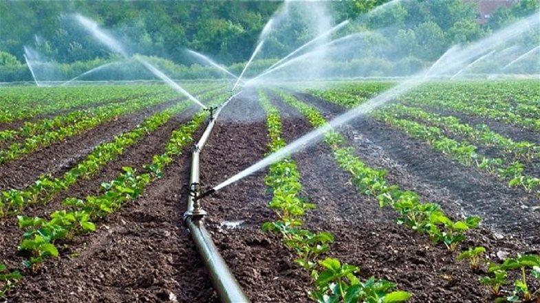 Cassano, nella contrada Lattughelle manca l'acqua per irrigare i campi: «Vergognoso»