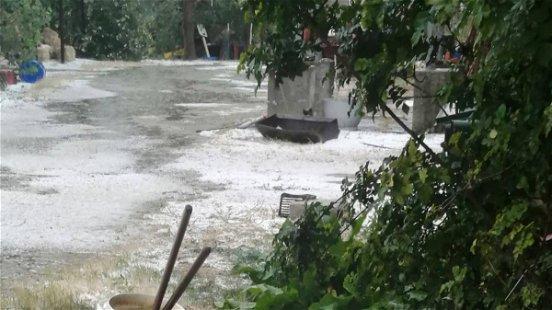 Eccezionale grandinata nella Sibaritide, Coldiretti chiede immediata ricognizione dei danni