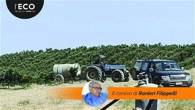 Emergenza siccità nelle aziende agricole per inefficienze del Consorzio di Bonifica