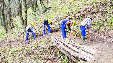 Forestazione calabrese: in caso di assenza di soluzioni concrete, i sindacati si preparano allo sciopero