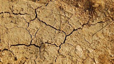 Corigliano-Rossano, disagio idrico: «Agricoltura penalizzata dalla mancanza d'acqua»
