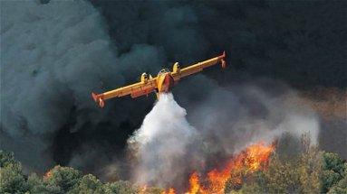 La Sibaritide brucia: 200 ettari in fiamme a San Demetrio e a Roseto chiesto lo stato di calamità - VIDEO