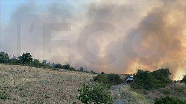 Vasto incendio a Oriolo, salvata dalle fiamme un'azienda agricola. Lavoro incessante di Vigili del Fuoco e Calabria Verde