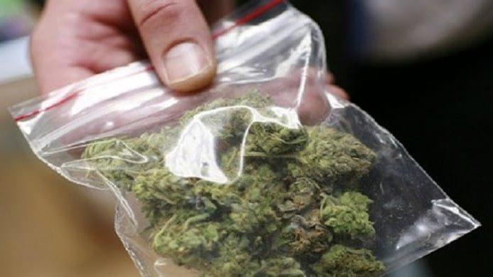 Vent'anni, una vita tranquilla ma con 100 grammi di marijuana nascosti nella cameretta