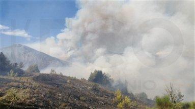 Torna a bruciare la Sibaritide-Pollino: mega incendio ad Albidona