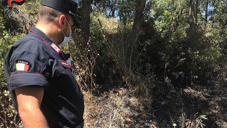 Pascolo abusivo, nei guai il sindaco ed il responsabile della Polizia municipale di Terravecchia