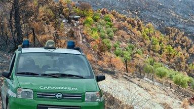Individuato il presunto piromane dell'incendio di Albidona