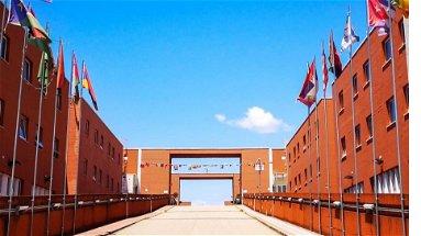Unical, l'associazione RDU: «Pronti a donare 900€ per borse aggiuntive, il Rettore risponda»