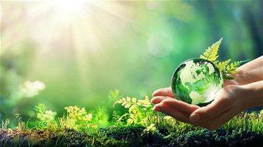 L'Unical cerca dottorandi su tematiche Green e dell'innovazione