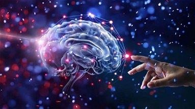 """Scoperte le """"impronte digitali del cervello"""", possono essere utilizzate per identificare le persone"""