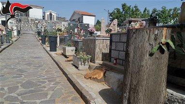 Caloveto, taglio dei cipressi al Cimitero: denunciato il responsabile dell'ufficio tecnico