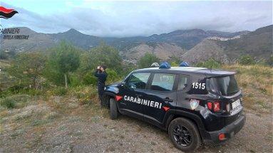 Controlli dei Carabinieri Forestali: denuncia per pascolo abusivo e sequestro di fabbricato abusivo